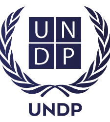 UNDP (Equality in The Development of World Information Technology)